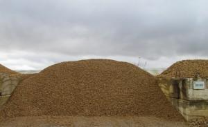 case 20-40 roche