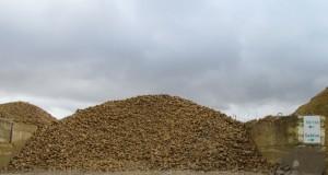case 50-150 roche