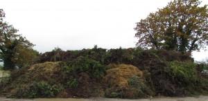 case déchets verts